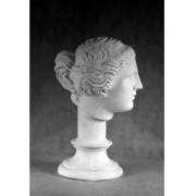 Учебное пособие гипсовая фигура - голова Венера Милосская