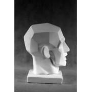 Учебное пособие гипсовая фигура - голова Обрубовка по гудону (не симметричная в плоскостях разные группы мышц)