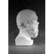 Учебное пособие гипсовая фигура - голова Сократ