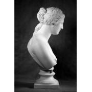Учебное пособие гипсовая фигура - бюст Венера Милосская