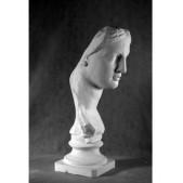 Учебное пособие гипсовая фигура - бюст Венера