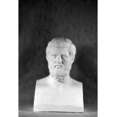 Учебное пособие гипсовая фигура - бюст Геродот