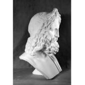 Учебное пособие гипсовая фигура - бюст Зевс