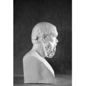 Учебное пособие гипсовая фигура - бюст Сократ